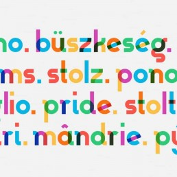 lettertype multicolor type with pride